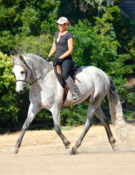 With a big facility upgrade and recent successes at the Western Dressage World Championships, Speak Equine is poised to take the training world by storm in 2016.