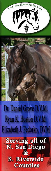 West Coast Equine Medicine Inc - Dr. Daniel Grove D.V.M & Dr Ryan K. Heaton D.V.M. - Serving N. San Diego & S. Riverside Counties