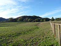 Wanted: Equestrian Fence/ Shelter Repairmen. Fallbrook/ San Diego, CA area