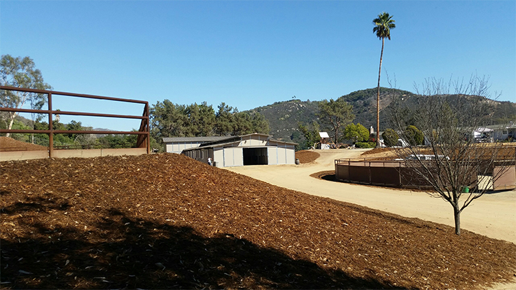 ISO Western trainer for our private horse property in San Marcos, CA.