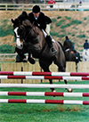 Lisa Rodgers, owner and trainer, offers customized programs for horses and riders of all ages and levels.