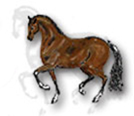 Looking for Dressage, Western, Western Equitation, English Equitation trainer. Potential to create your own business. Please send resume to listonrescue@gmail.com