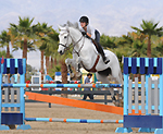 Midnight Farms specializes in Hunters, Jumpers, Equitation, Showing and Sales. Moorpark.