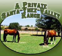A Santa Ynez Valley Show Horse Retirement Ranch