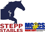 Stepp Stables