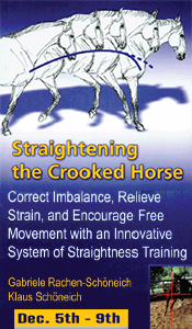 Lionheart Ranch presents Straighten the Crooked Horse
