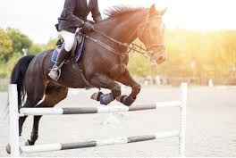 Employment Available Hunter/Jumper & Dressage Trainers/Instructors Needed POWAY, California