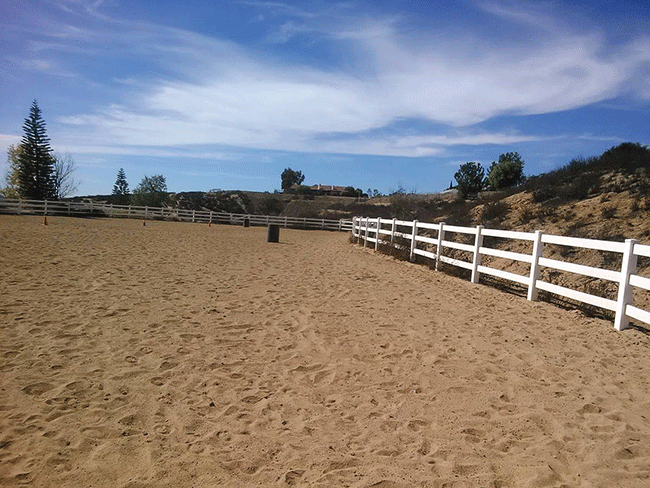 Royal Horses Stables Boarding - Full service Hunter, Jumper, Equitation,  Training - Lessons - Sales - located in beautiful Twin Oaks Valley in San Marcos, California.