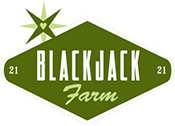 Blackjack fitness vista ca
