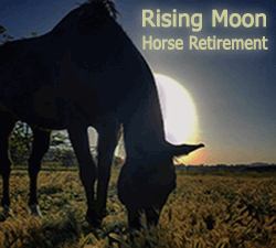 Rising Moon Horse Retirement -  Tehachapi, California.